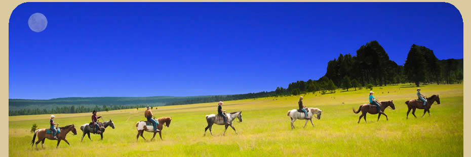 Denver Horse Rentals