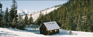 Pioneer Guest Cabins Crested Butte