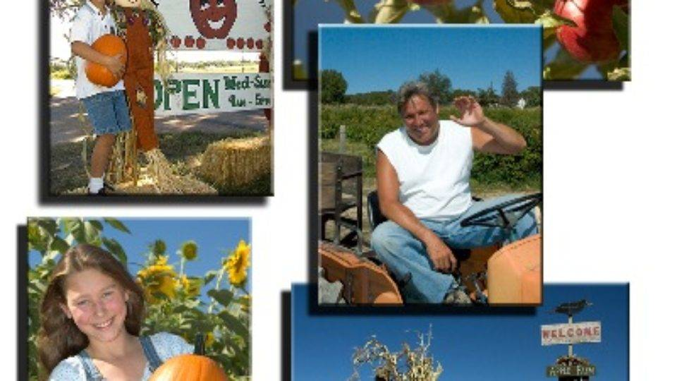 Yours for the picking: Get Colorado produce at its freshest