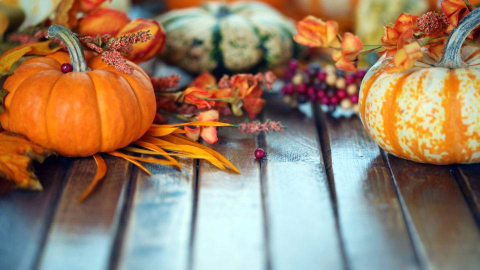 Make The Best Use Of That Extra Hour This November