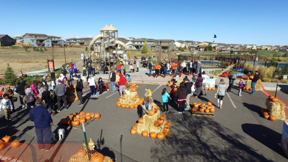 Stepping Stone's 2017 Fall Festival