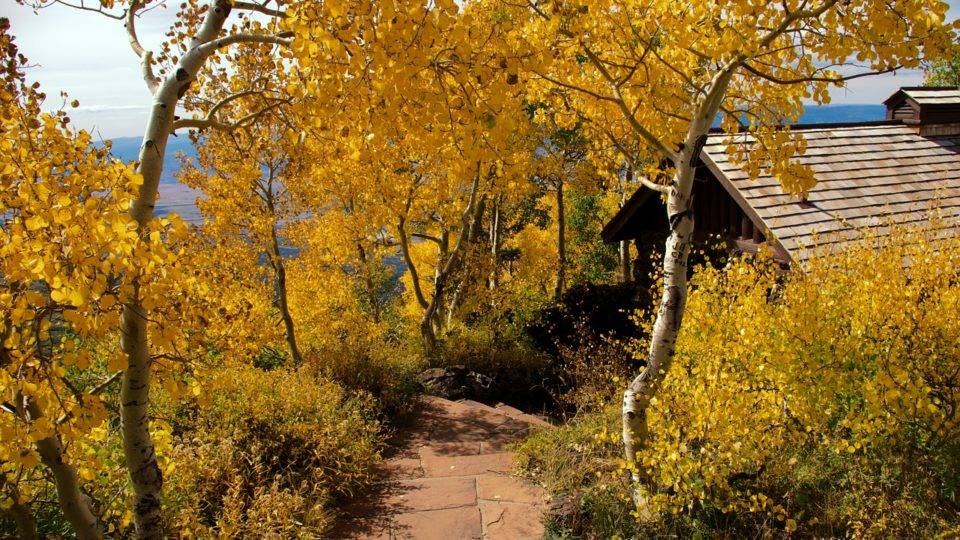 Where to Chase the Changing Leaves this Fall