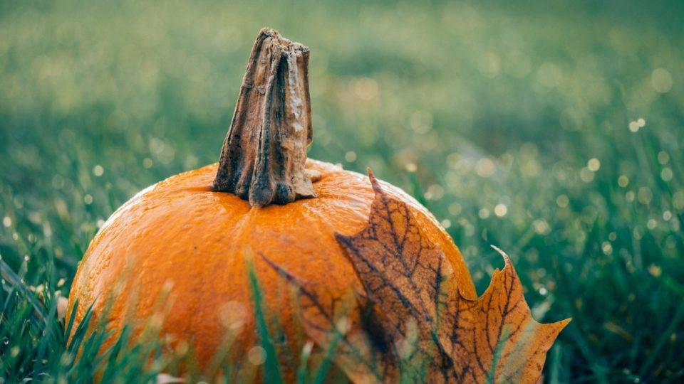 It's official – October is the greatest month of the year