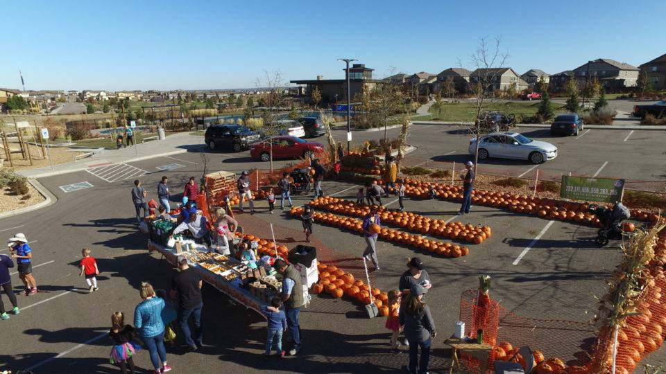Fun for everyone at Stepping Stone's Fall Festival!