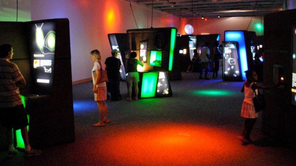 http://thewildlifeexperience.org/exhibits/