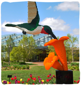 Denver Zoo Connect Nature legos