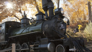 Trick or Treat Train
