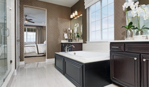 Cynthia master bathroom