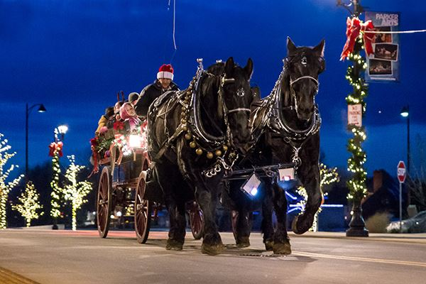 Carriage Rides- Parker CO