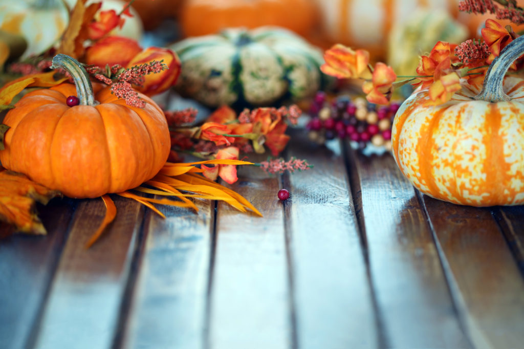 Autumn pumpkins background